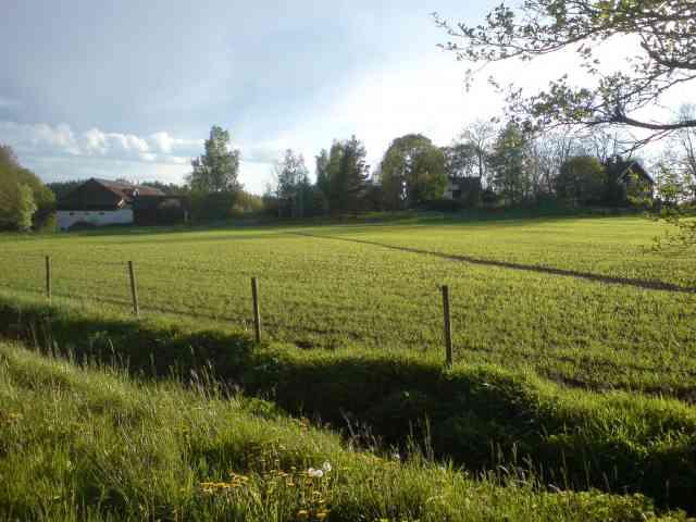 Bild över Åby gårds hagar